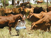 Sarah with cows and calves